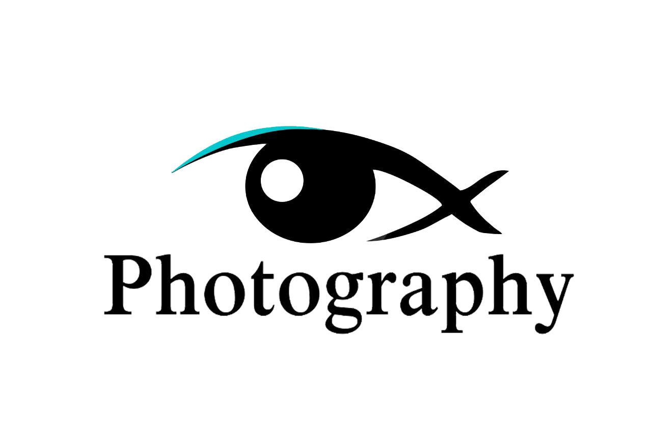 visualx_photography_logo.png
